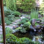 pre enzyme treatment garden