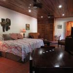 El Gekko Studio, A/C, Kitchen, King Bed, All pics are taken with our camera on/or from Jungle Cr