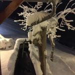 Winterimpression beim Brunnen vor dem Haus