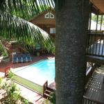 Starry Night:view of pool and other deck w/ trunk of ceiba tree