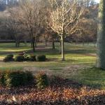 View From Front Porch in December