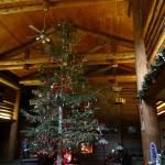 Lodge entrance & 26 ft tree