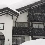stay on a snowy day