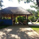 jardin bar piscine