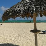 Cana huts at the beach front