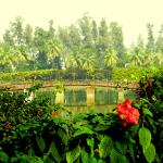 Island Garden Dadra Park