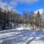 Cross-Country Ski day