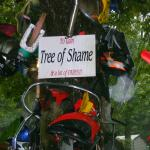 The tree of shame