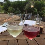 A glass of beautiful Waiheke Island Sauvignon Blanc and a delicious Rosé.
