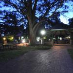 Photo de Federation Gardens & Possums Hideaway
