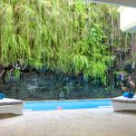 Tropical plant wall above pool - C1