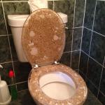 Sand and shells toilet seat!!! I love it