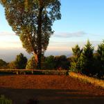 Kollenkeril Plantation Home-Stay Bungalow Foto