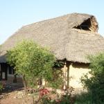 le bungalow-tente