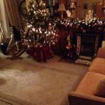The lounge decorated for Christmas