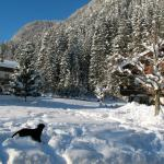 Our dogs loved the large garden and area around Haus Manuela