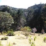 Vista de Montaña