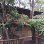 Foto de Guest Cottages at Volcano Tree House