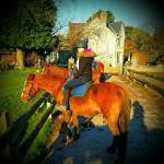 Pony riding around the Gower
