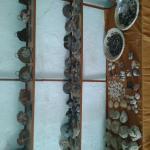fossils shop merzouga