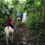 Waterfall during Don Tobias horseback tour