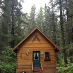 Bear Creek Cabin One