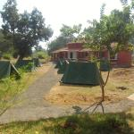 Tala Camp also provide camping site.