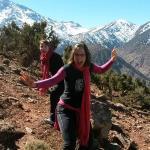 Juniper tree grove in the Atlas mountains