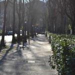 Viale Michelangelo, nei pressi dell'entrata