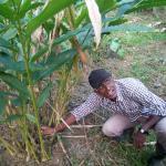Mr. Soman showing his farm