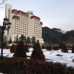 View of hotel from the garden