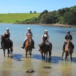 Bit of beach; couldn't get the horses in further than this.