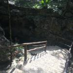 stairs to enter from jungle down to cenote