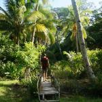 De tuin van Mangrove Resort
