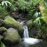 Small streams accompany you for your entire journey