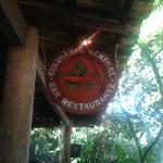 Photo of Culinaria Central