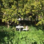 2 janvier, dans le jardin entièrement privatisé, entourés d'orangers et de citronniers