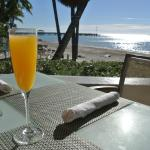 mimosa by the beach