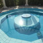 """the non functioning """"hot-tub"""" which was just a mosquito breeding ground, look close to see the l"""