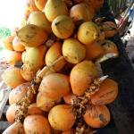 Кокосы по 40 рупий