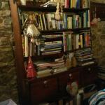 La saletta ricreativa TV/biblioteca/caminetto/salottino