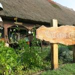 Galerie-Cafe Kurenz
