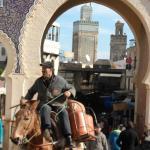 Gate to Medina in Fez