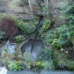 waterfall, pond and gardens