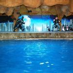 Batman Cavepool