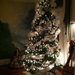 Wonderful Christmas Spirit