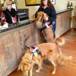 Winston at the bar