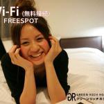 Wi-Fi(無料接続)