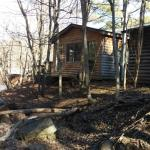 Back of Cabin 8 and creek