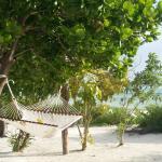 Kisiwa on the beach